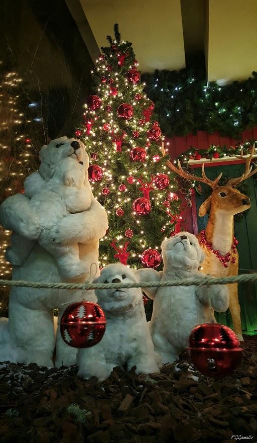 Imagenes navideñas de osos y renos