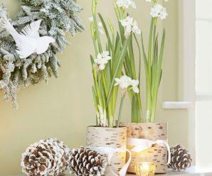 10 Ideas De Decoración Navideña para Alegrar La Casa