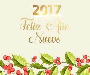 Imagenes Bonitas Feliz Año Nuevo 2017