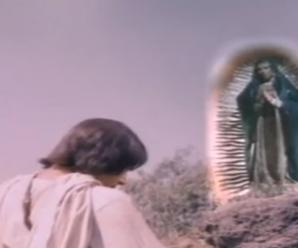 Ver Película Completa De La Virgen De Guadalupe y Juan Diego