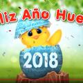 Videos Cortos Feliz Año Nuevo para Compartir En Redes Sociales