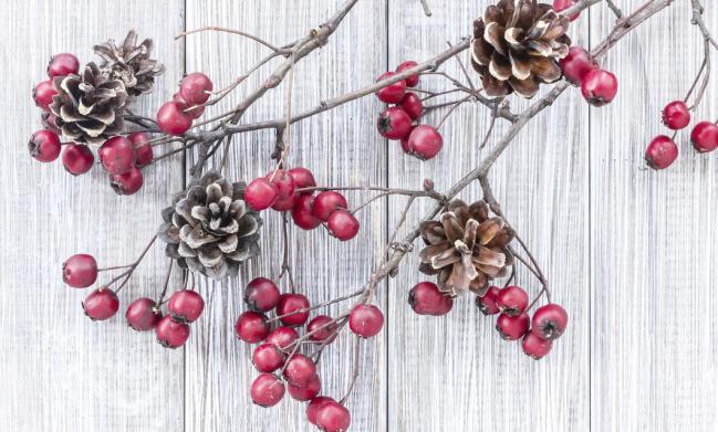 7-ideas-para-hacer-mas-acogedora-tu-casa-para-las-fiestas-decembrinas-5