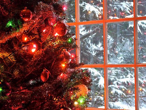Tu Árbol de Navidad Especial